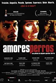 Amores Perros (2000) ความรักหมาๆ
